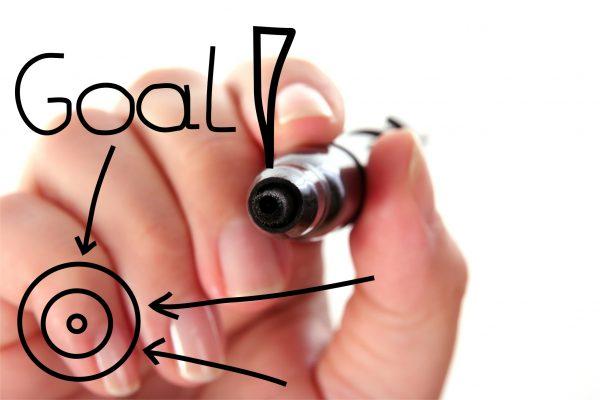 ネットビジネス,目標